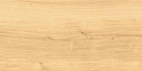 Керамогранит глаз. Woodhouse Бежевый WS4O012D 59,8x29,7 (1.6) купить