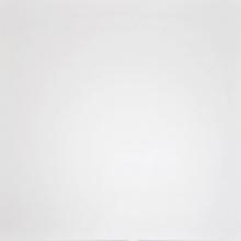 Гранит неполированный настенный G-100/MR, белый моноколор (60х60) купить