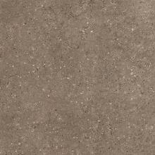 Керамогранит Аркаим Коричневый полированный G214 (60х60)  купить