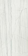 Керамический гранит Шарм Эдванс Платинум Уйат (60х120) 610015000584 купить
