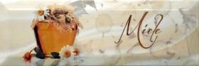 Декор DOLCEVITA Decor miele (10х30) купить