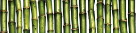 Бордюр Jungle JU1C021  зелёный (25х6) купить