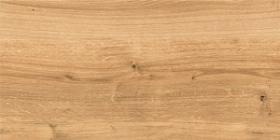 Керамогранит глаз. Woodhouse Коричневый WS4O112D 59,8x29,7 (1.6) купить