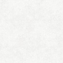 Керамогранит Trendy TY4R092 арт серый (42x42) купить