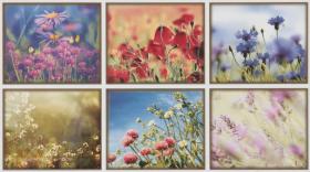Декор  SYMBOL цветы WITP3097 (25х45) купить
