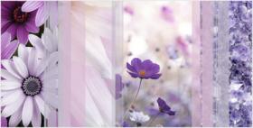 Вставка ВС9КЛ023 Коллаж цветок (24,9х50) купить