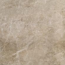 Керамический гранит ЭЛИТ Силвер Грэй (60х60) 610010000530 купить