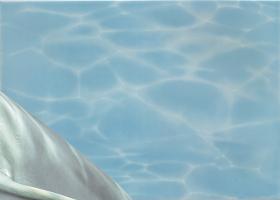 """Вставка """"Дельфин 2"""" бирюзовый (25х35) купить"""