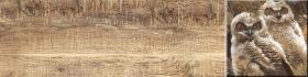 Вставка Дуб 1 палевый совы (60х15) купить