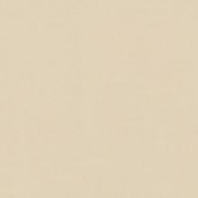 Керамогранит Имэджин уайт, натуральный (60х60) купить