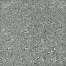 Керамический гранит полированный G-610/P серый (60х60) купить