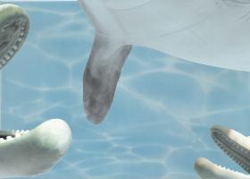 """Вставка """"Дельфин 4"""" бирюзовый (25х35) купить"""