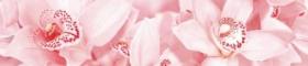 Бордюр Aroma 1504-0126 роз.(45х7,5) купить
