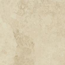 Керамический гранит Вандефул Лайф Алмонд (80х80) 610010002156 купить