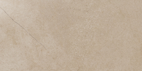 Керамический гранит Контемпора Флэйр пат (30х60) 610015000259 купить