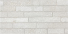Глазурованный керамогранит BRICKSTONE DARSE687 светло-серый (30х60) купить