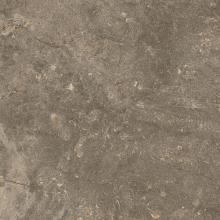 Керамический гранит  глазурованный ЧЕРВИНИЯ ЗЕМЛЯ (45х45) 610010001441 купить